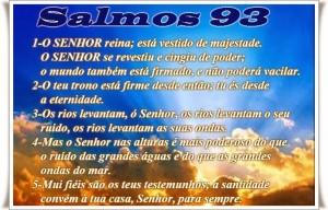 salmo-9351